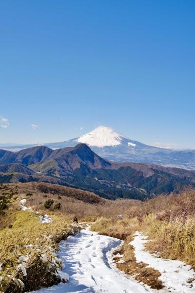 富士山の手前のこんもりした山が金時山!明神ヶ岳から3時間かかります