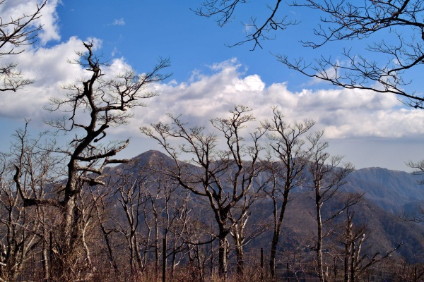 蛭ヶ岳~丹沢山方面。