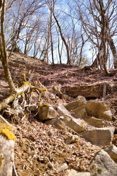道が荒れている石棚山ルート。