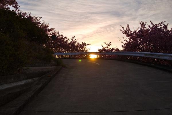 朝日が昇ってきた。