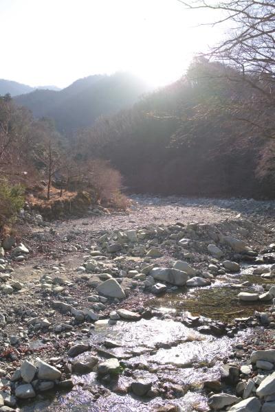 朝日きらめく小川。