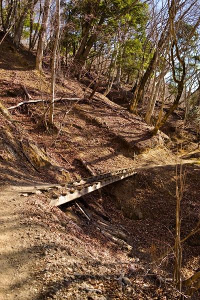 揺れる木の橋を渡る。