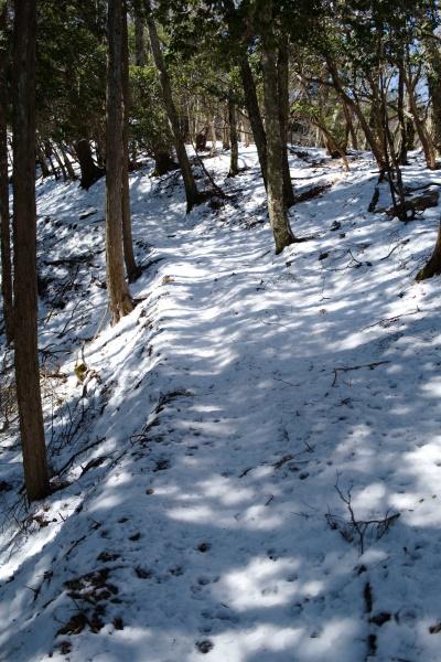 歩きづらい雪道を登る。