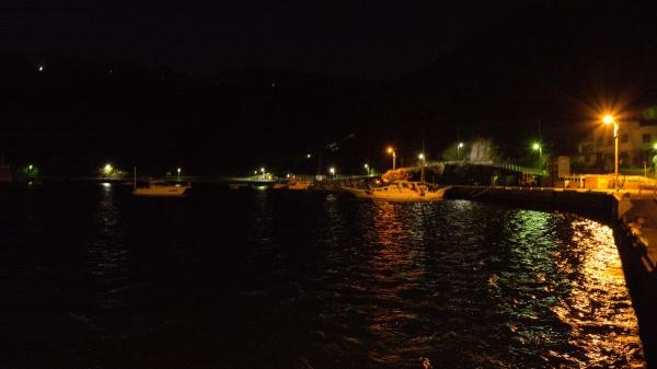 やっぱ夜釣りは常夜灯ないとね。