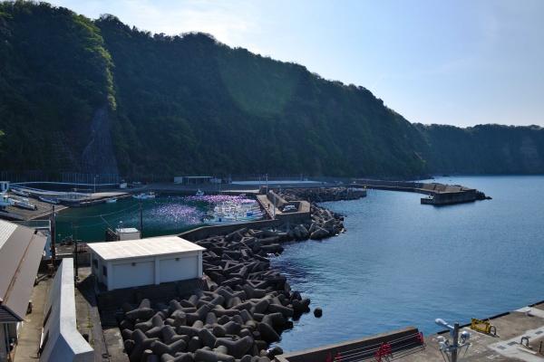 漁港の雰囲気が良くて好き。
