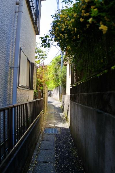 細い住宅街の路地を進む。