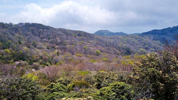 山が徐々に色づく。