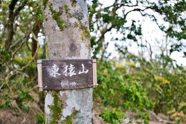 東猿山に着いた。
