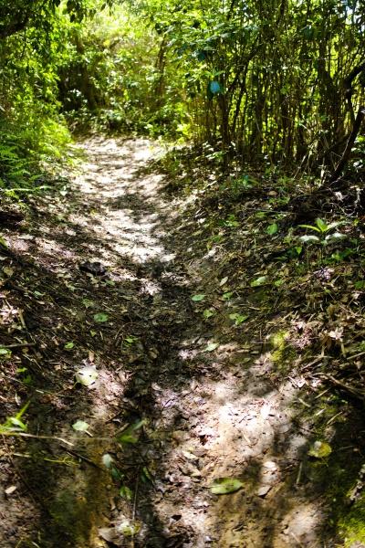 粘土質で滑りやすい道。