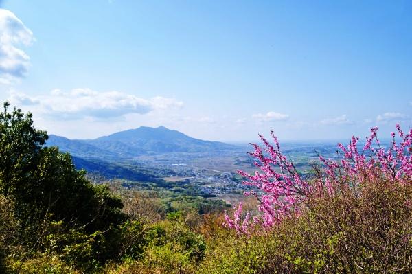 雨引山から筑波山までの山並みを眺める。