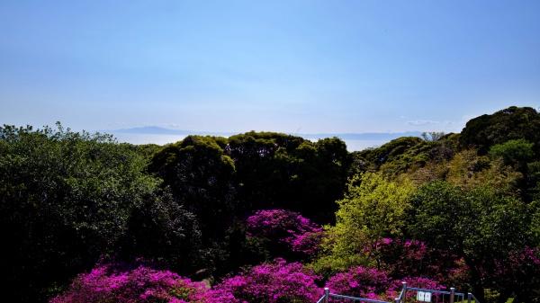伊豆大島まで見渡せました!