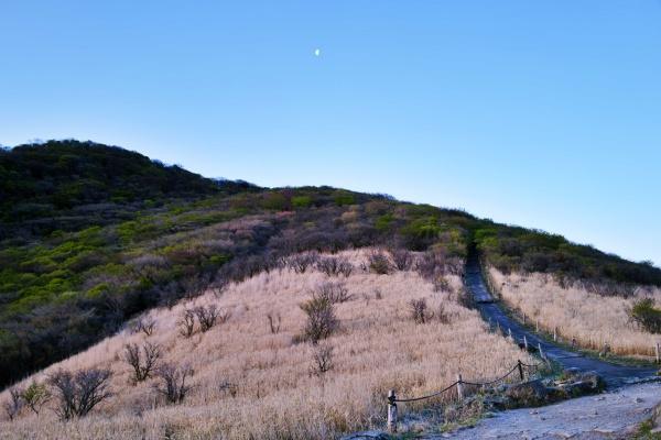 月と登山道