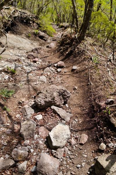岩の道もなかなか危ない。