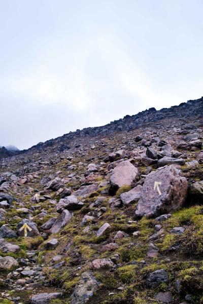 岩に矢印が描かれているので進みやすい。