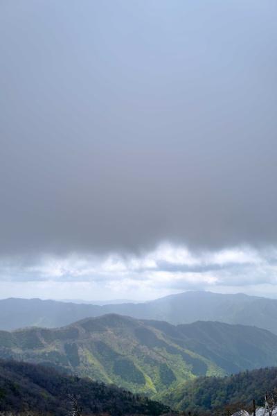 重たい雲が上空を覆う。