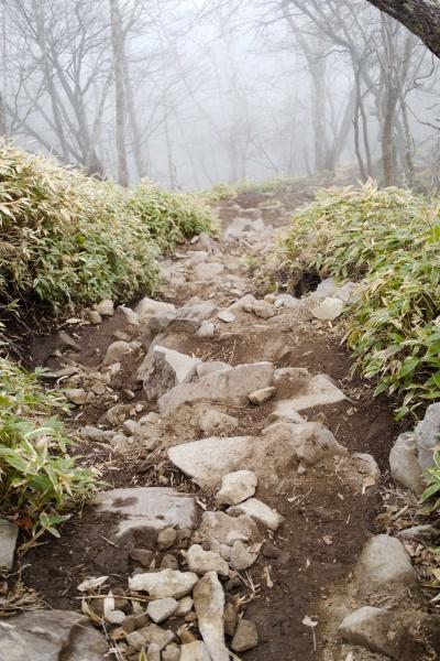 急な岩道が続く登山道。