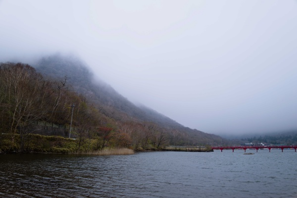 駒ヶ岳も霧が立ち込める