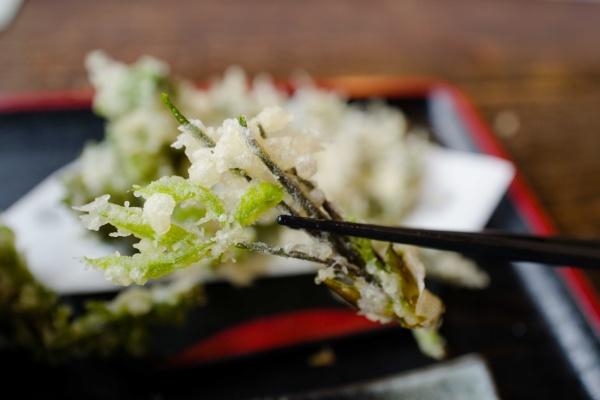香りが良いコシアブラの天ぷら