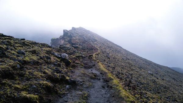 高岳へ向けて歩く。