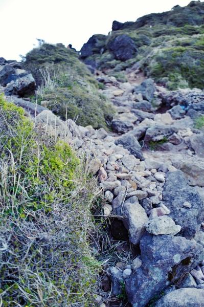 急登の岩場。
