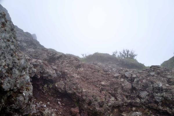 山頂…何が見えるんや…