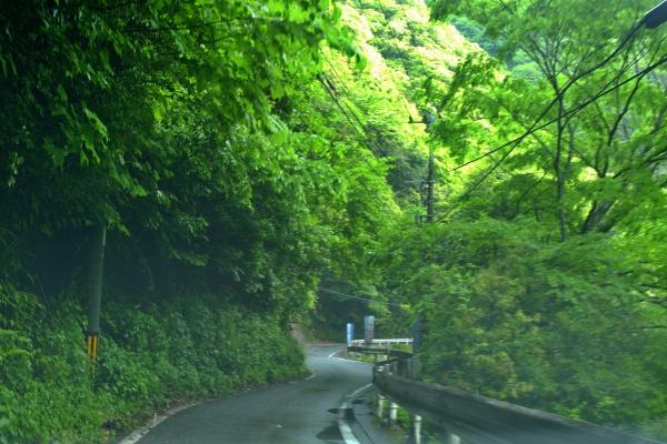 細い車道を突き進む。対向車に注意。