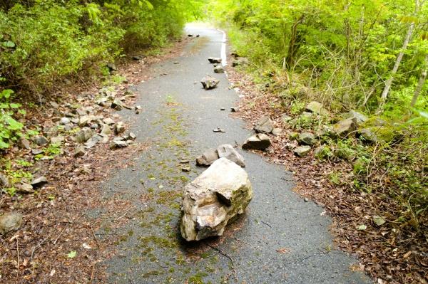 ゴロゴロとした落石が行く手を阻む。