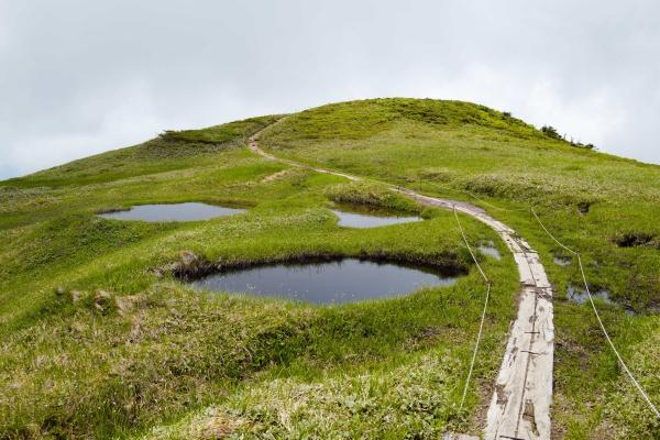 沼が絵になる巻機山。