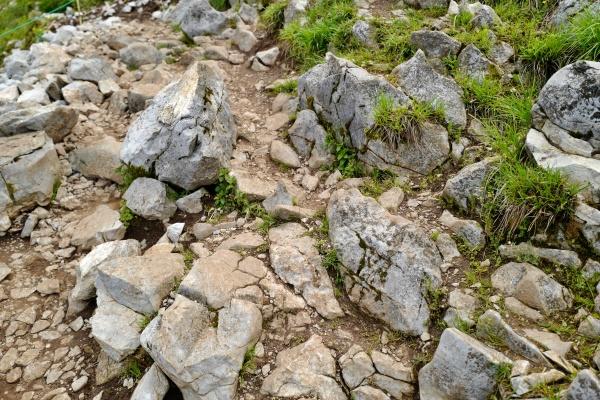 岩場もきついけど面白い。