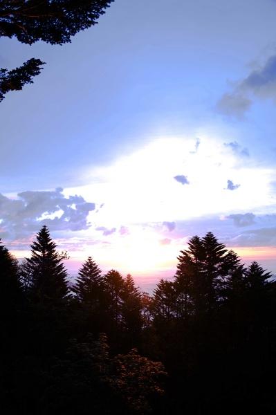 雲海から太陽が現れる。