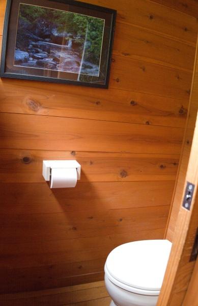 トイレットペーパーの紙は水に流さずに、目の前にあるボックスにポイと捨てる
