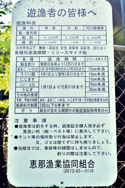 中津川の釣り情報
