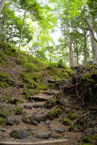 下山者は数人ほどいた須走口。