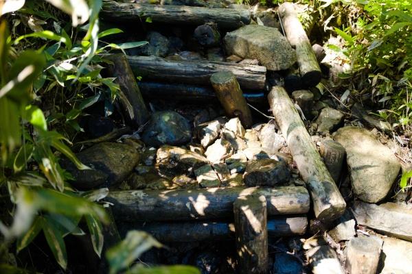 水量の多い木道。滑りやすい