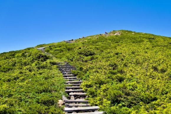天まで続く至仏山ロード