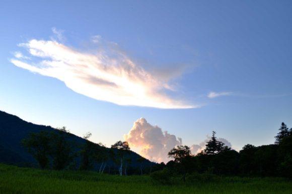 発達している夏の雲