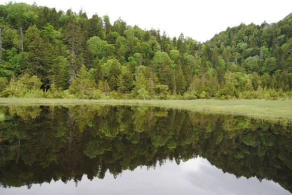 2010年に撮影した浅湖湿原