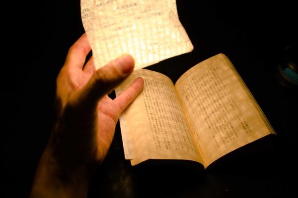 読書には十分な明るさ。