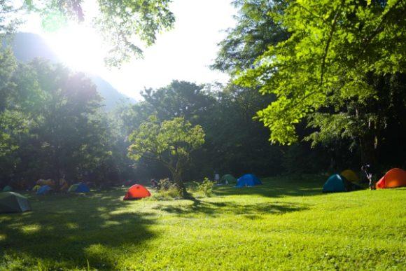 朝日に光る徳沢キャンプ場
