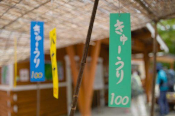 キュウリは100円。