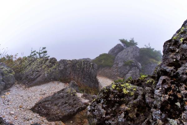 砂地の稜線。何も見えない…。