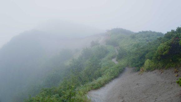 雨の縦走路。