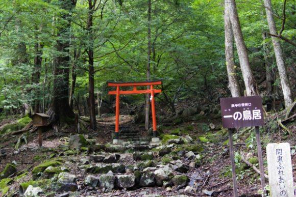 ここから登山道っぽくなる!