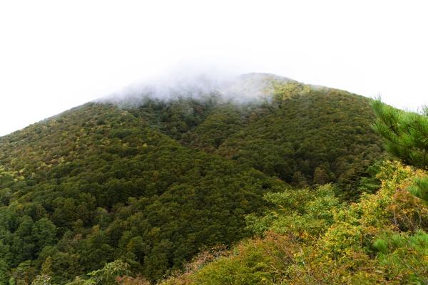 山腹からの磐梯山。