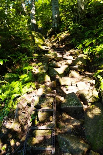 短い鉄梯子からの坂道。