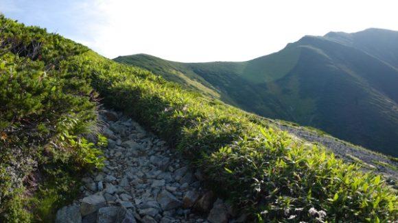 朝日の中をハイキング