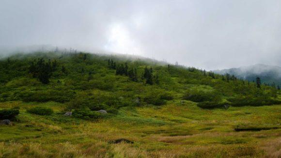 山の谷間にあるキャンプ場は静かだ。