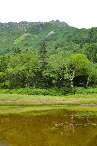 水晶岳と池がある。