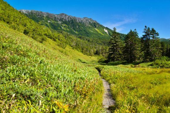高天原から水晶岳を眺める。きれいだな。