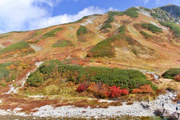 紅葉登山開始~!